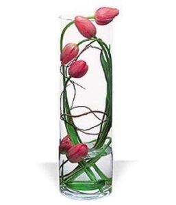 Enredo-de-tulipanes