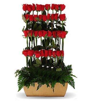florerías en la ciudad de méxico