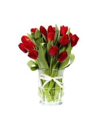 Tulipanes rojos envíos ciudad de México